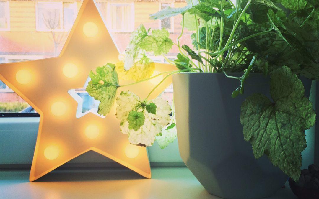 Kerstactie Oostergast – WIN gratis interieuradvies!