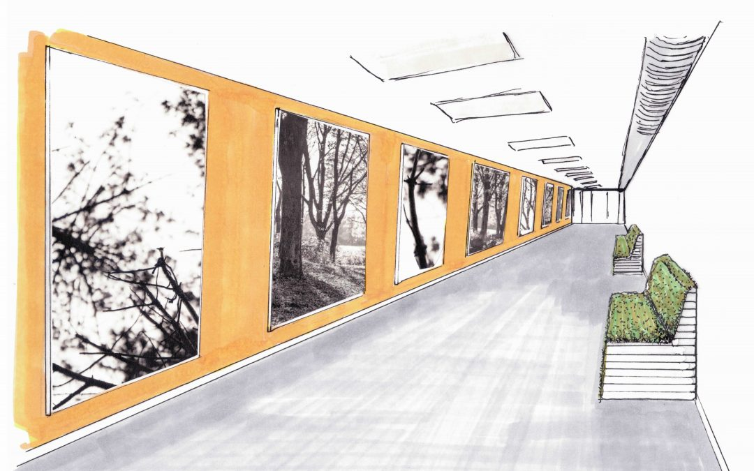 Sneak Preview interieurontwerp F.P.C. dr. S. Van Mesdag Kliniek!
